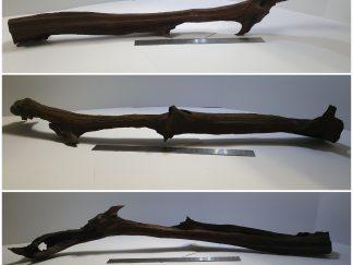 Driftwood #D0010