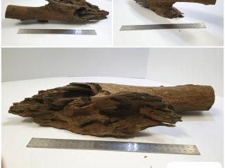 Driftwood #D0012