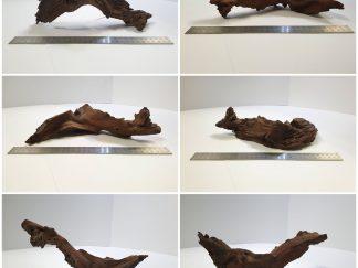 Driftwood #D0014