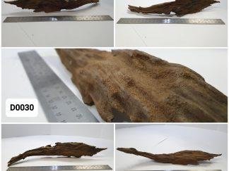 Driftwood #D0030