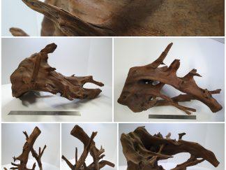 Driftwood #D0032