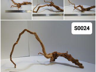 Spider wood #S0024