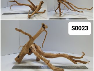 Spider wood #S0023