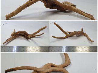 Spider wood #S0032