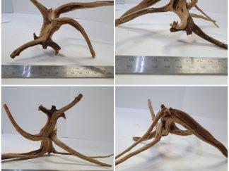 Spider wood #S0033