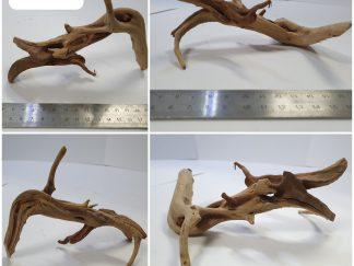 Spider wood #S0034