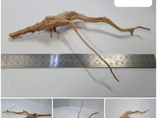 Spider wood #S0035