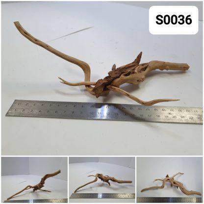 Spider wood #S0036