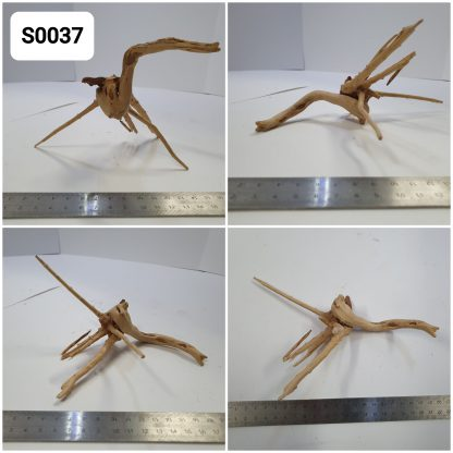 Spider wood #S0037