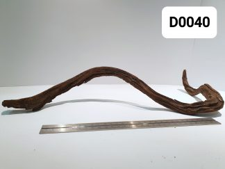 Driftwood 0040
