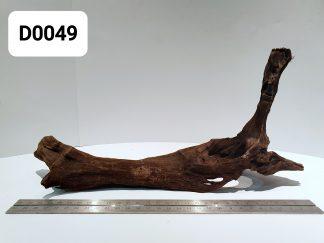 Driftwood 0048