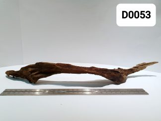 Driftwood 0053