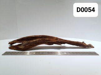 Driftwood 0054