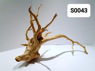 Spider wood 0043