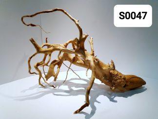 Spider wood 0047