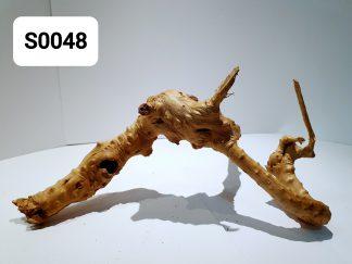 Spider wood 0048