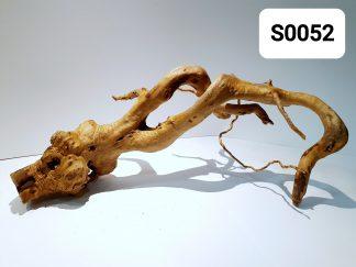 Spider wood 0052