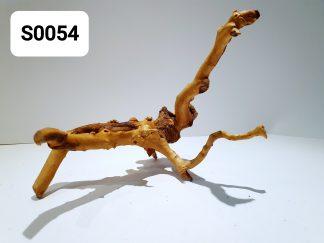 Spider wood 0054