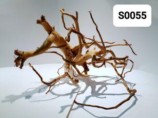Spider wood 0055