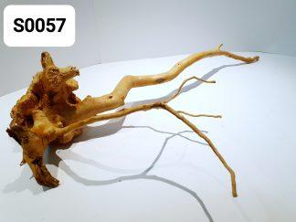Spider wood 0057
