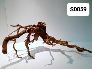 Spider wood 0059