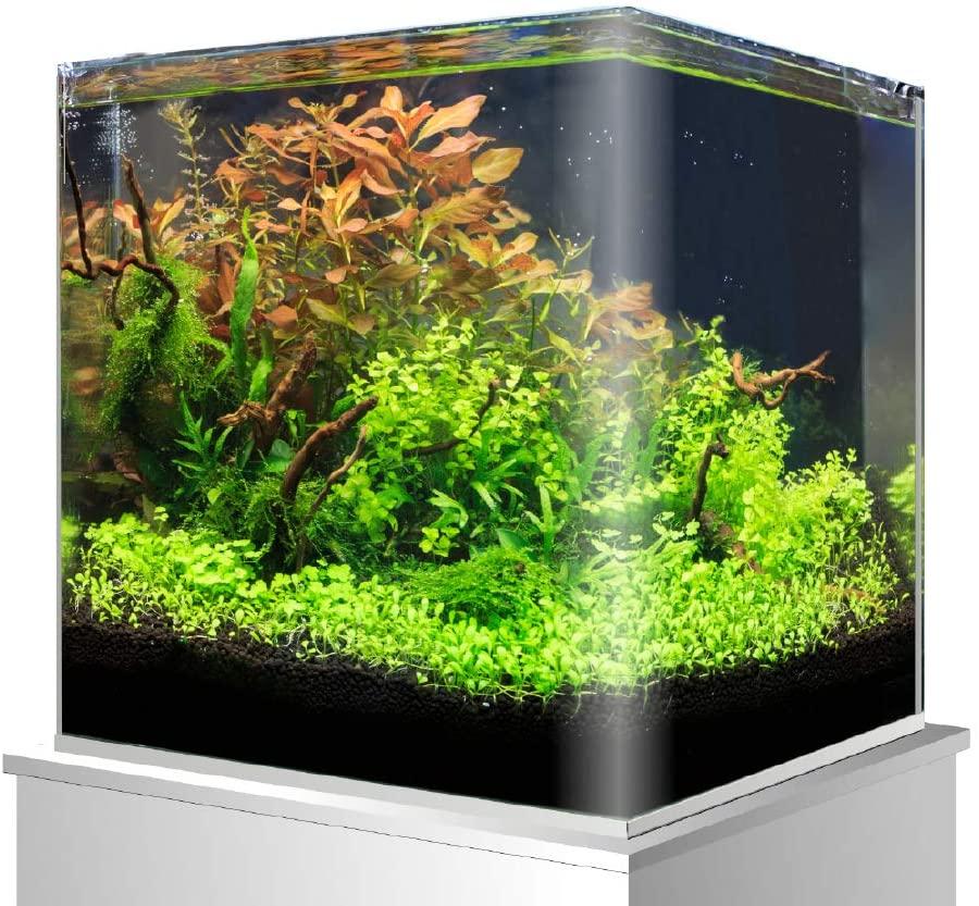 www.aquasnails.com