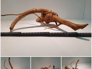 Spiderwood #S0079